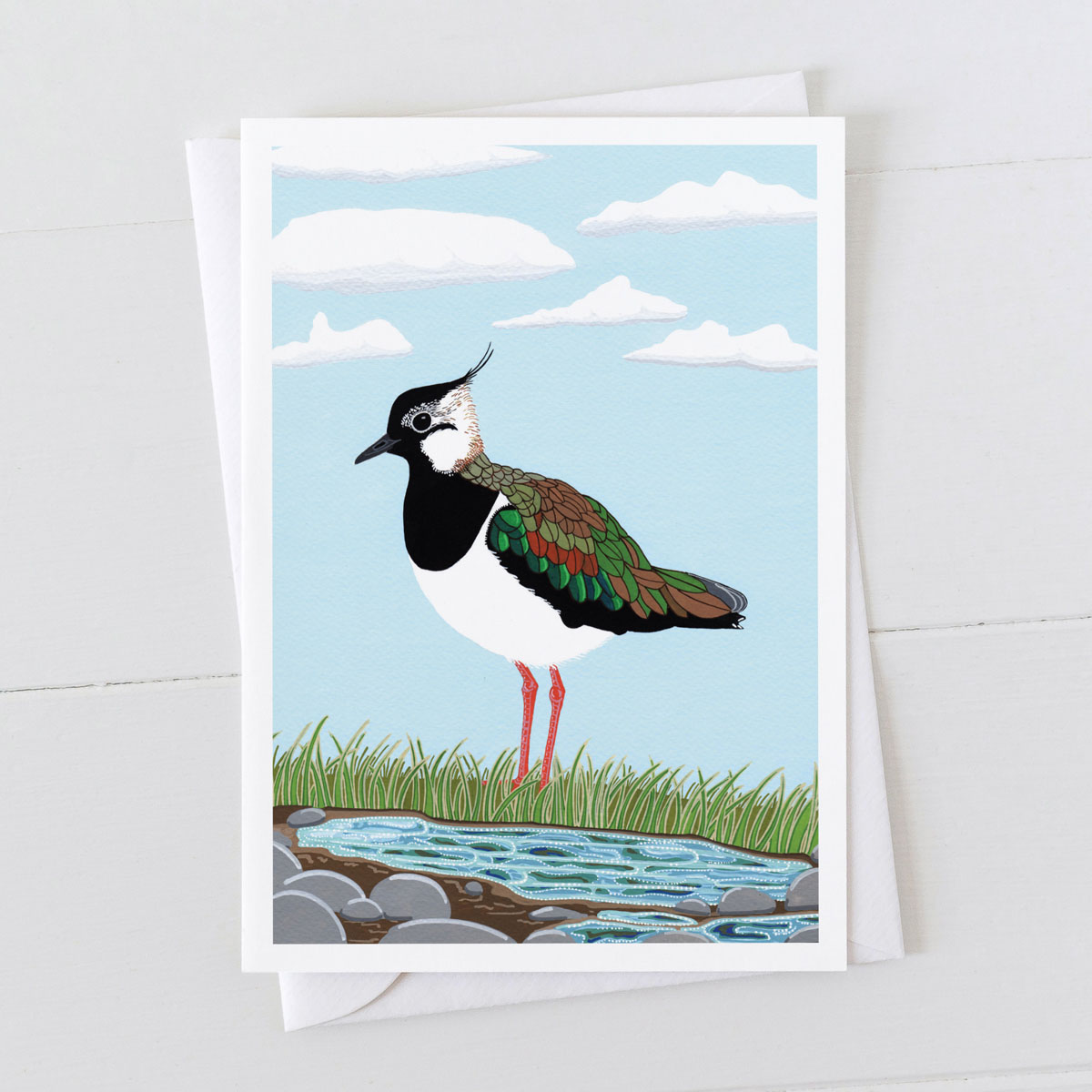 Lapwing Coastal Bird