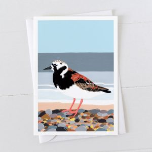 Turnstone Coastal Bird Greeting Card