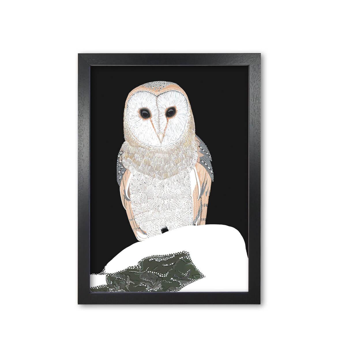 Barn Owl Print Mounted & Framed By Bird The Artist