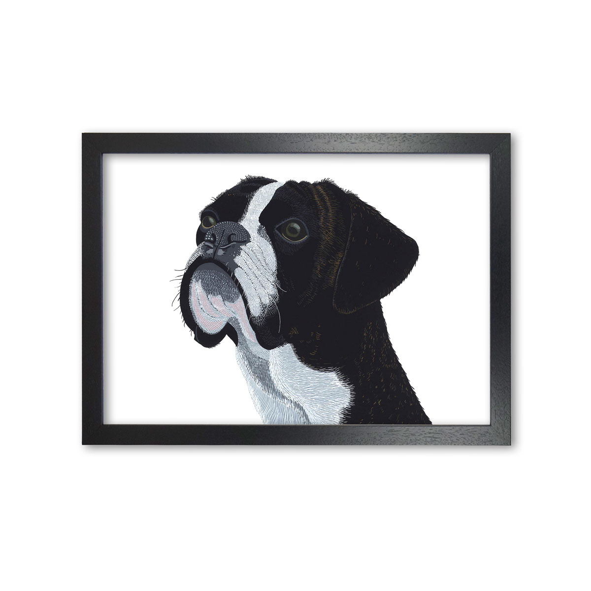 Boxer Dog Art Print Picture By Bir The Artist