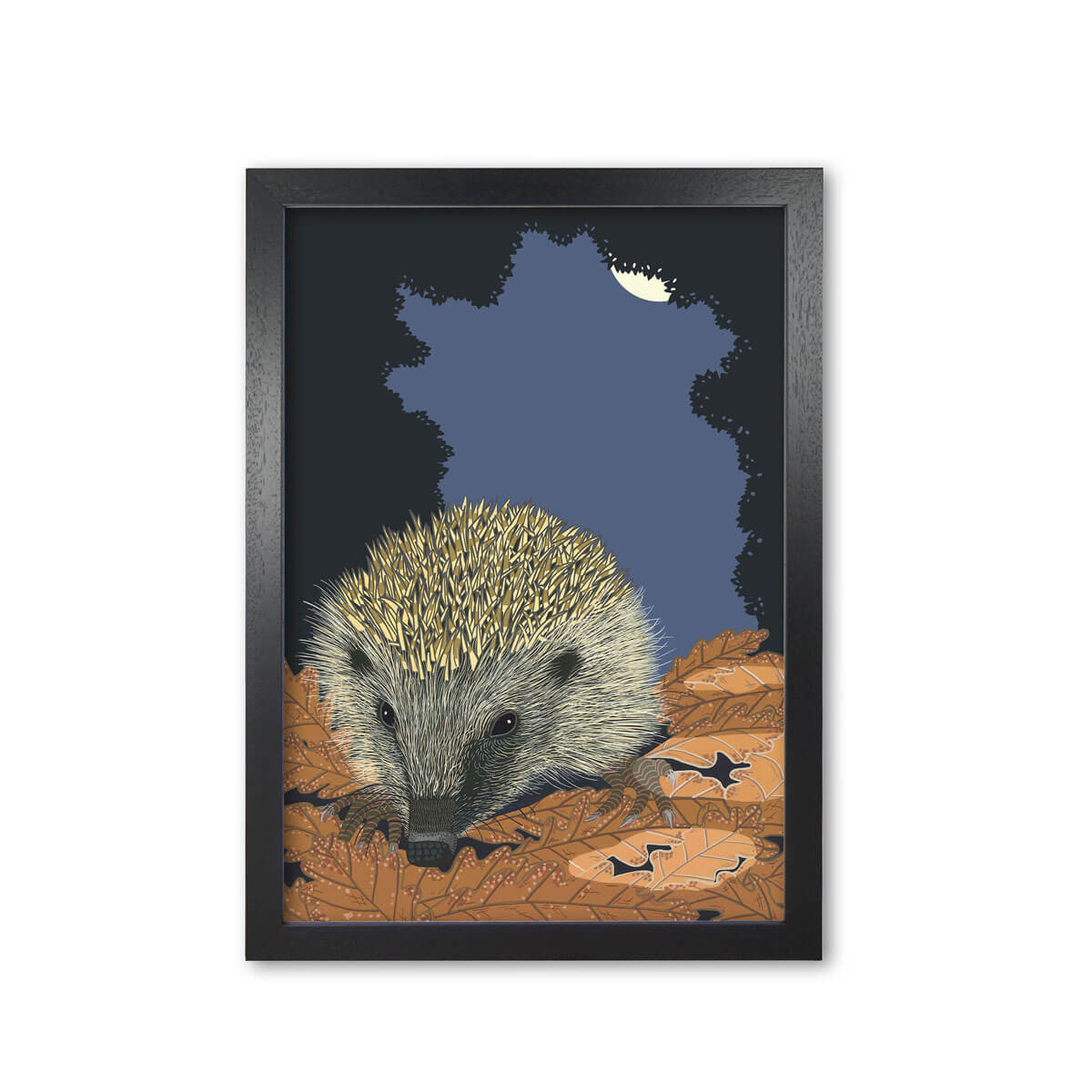 Hedgehog Art Print Mounted And Framed By Bird The Artist