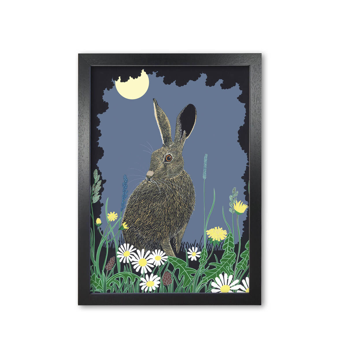 Night Hare Brown Hare Art Print Mounted And Framed By Bird