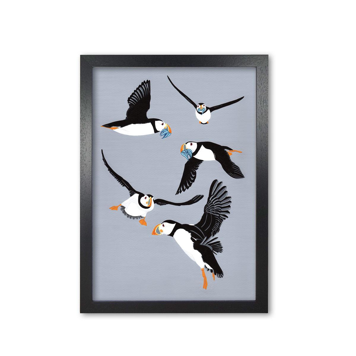 Puffins in Flight Puffin Print By Bird