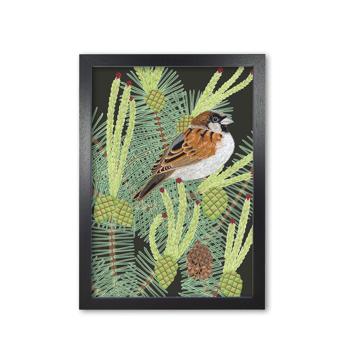 Sparrow Garden Bird Mounted And Framed Print