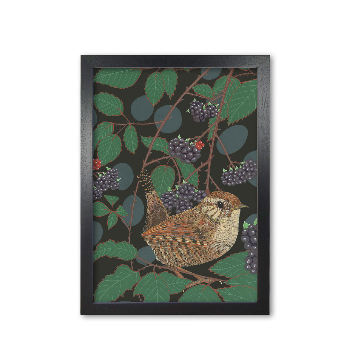 Wren Garden Bird Mounted And Framed Print