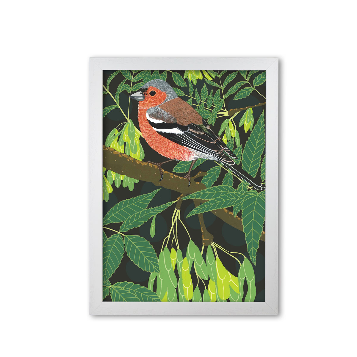 Chaffinch Garden Bird Mounted And Framed Print