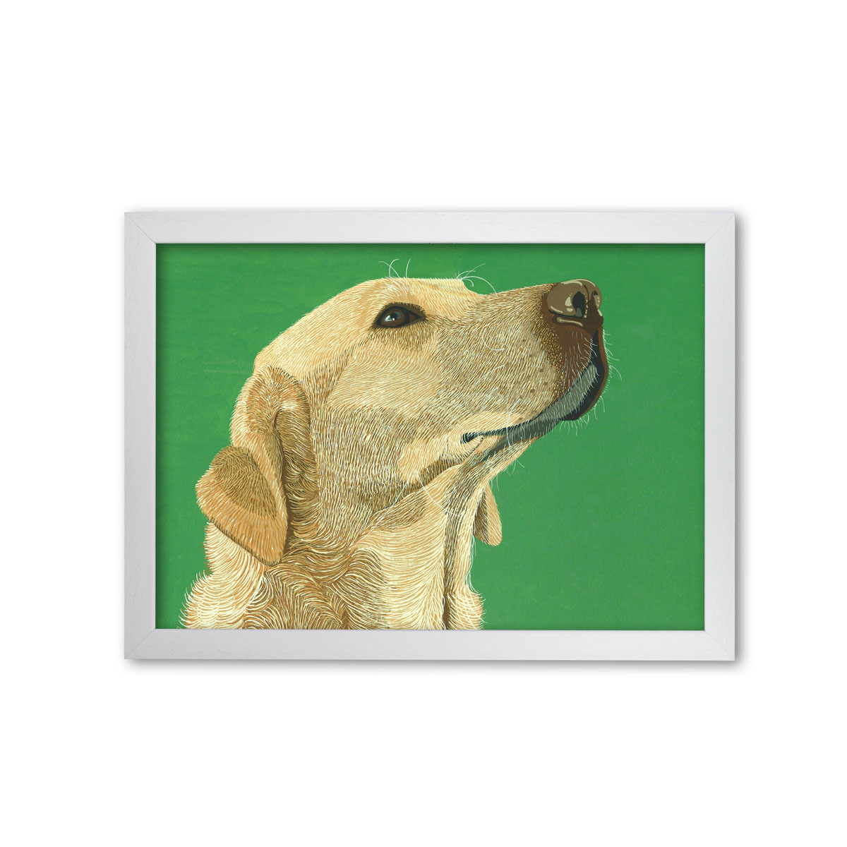 Golden Labrador Dog Art Print By Bird The Artist