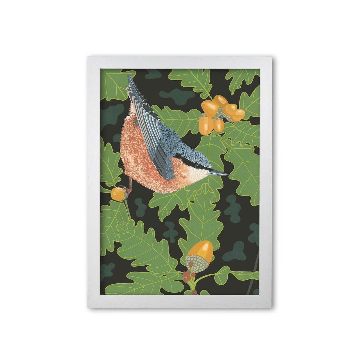 Nuthatch Garden Bird Mounted And Framed Print