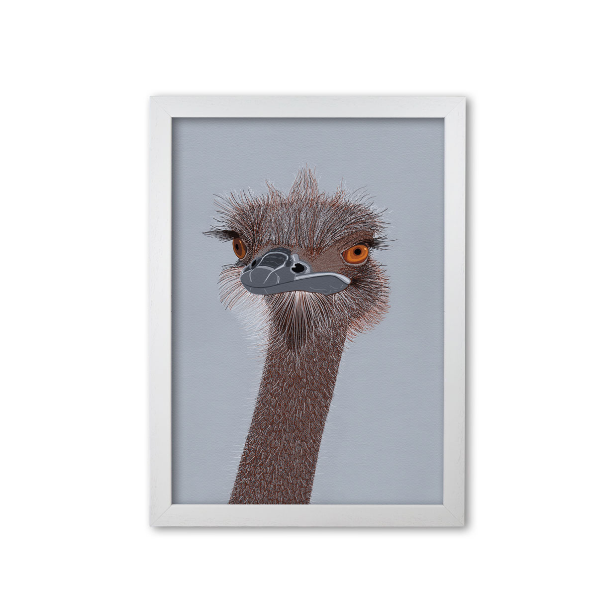 Ostrich Head Mounted and Framed Print