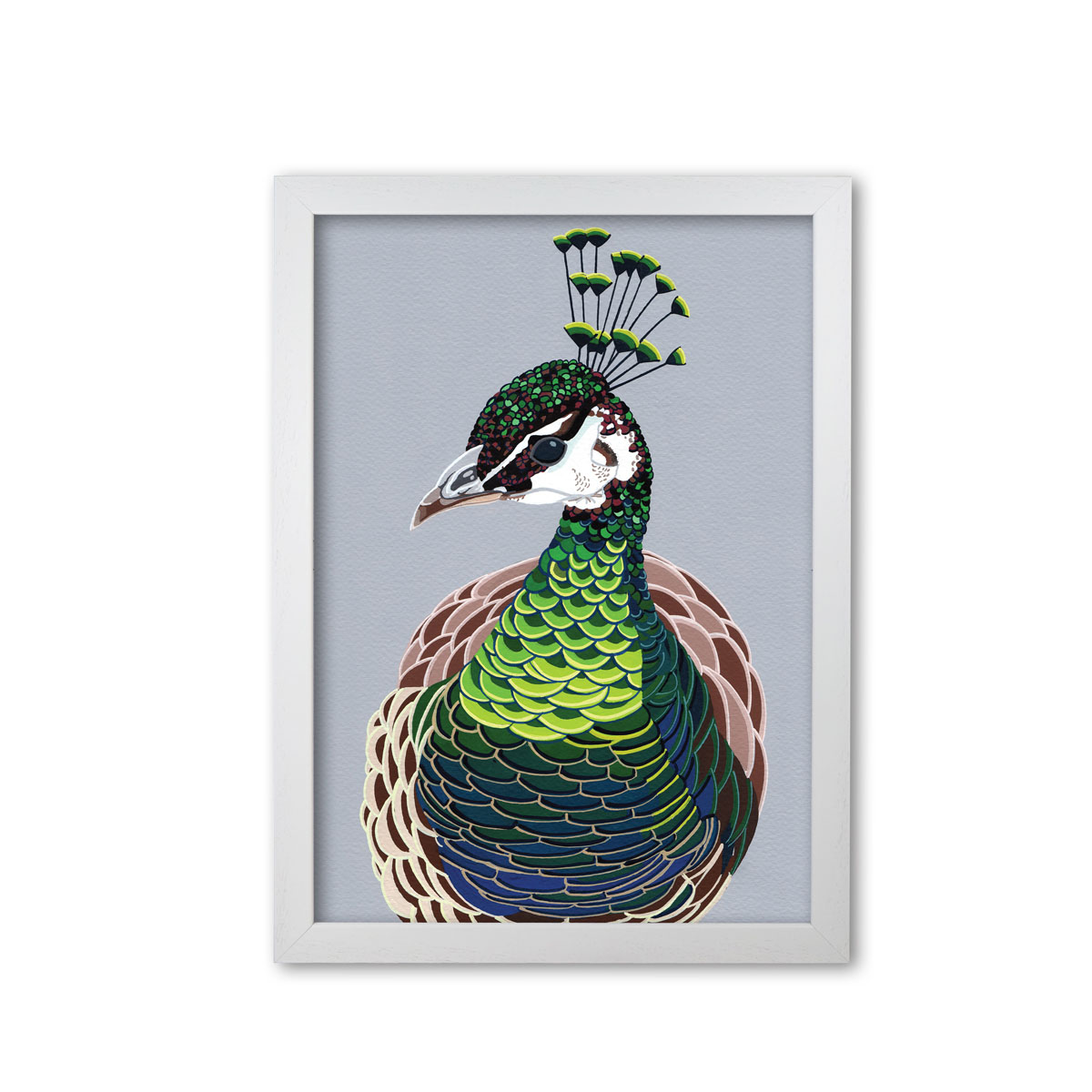 Peahen Bird Head Mounted And Framed Print