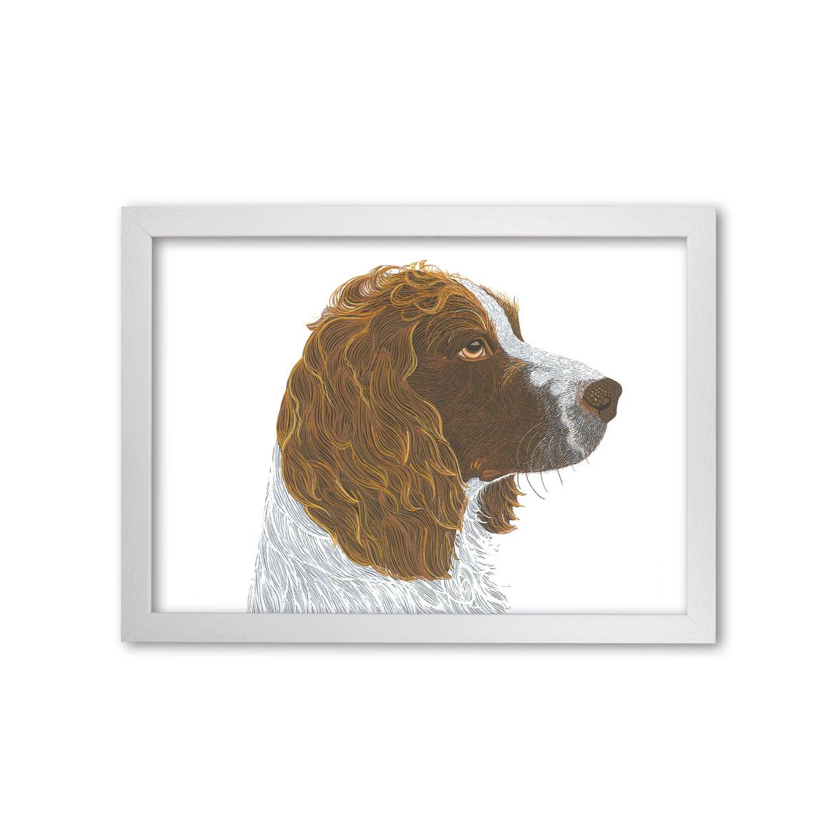 Springer Spaniel Dog Art Print By Bird The Artist