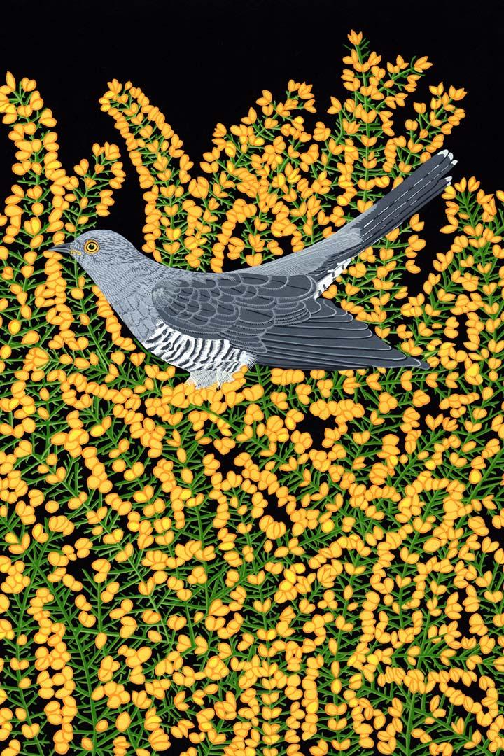 Garden Bird Cuckoo