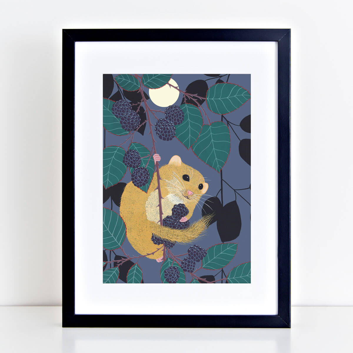 Dormouse Mouse Art Print Nocturnal Animal Mounted And Framed By Bird