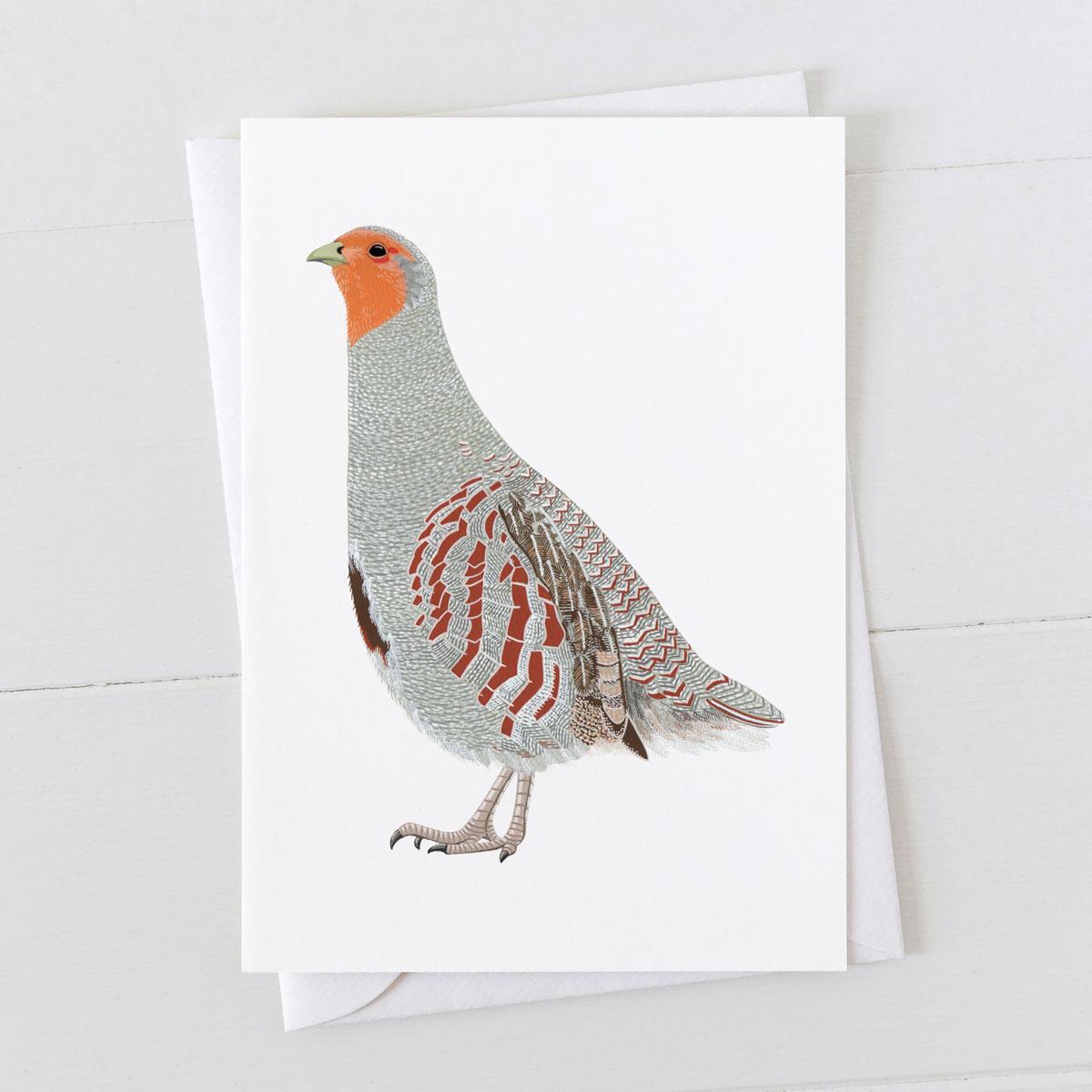 English Partridge Greeting card