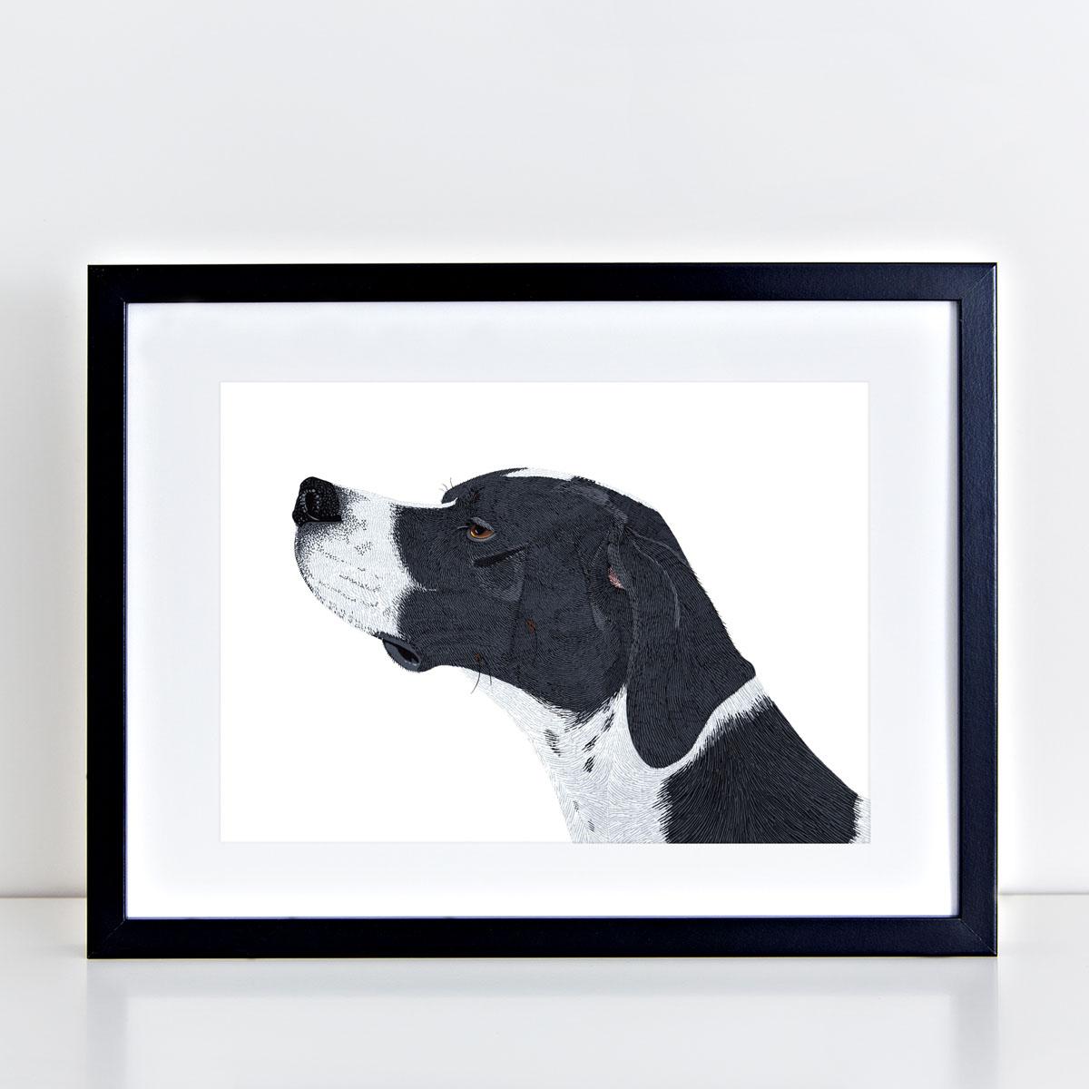 English Pointer Dog Art Print By Bird