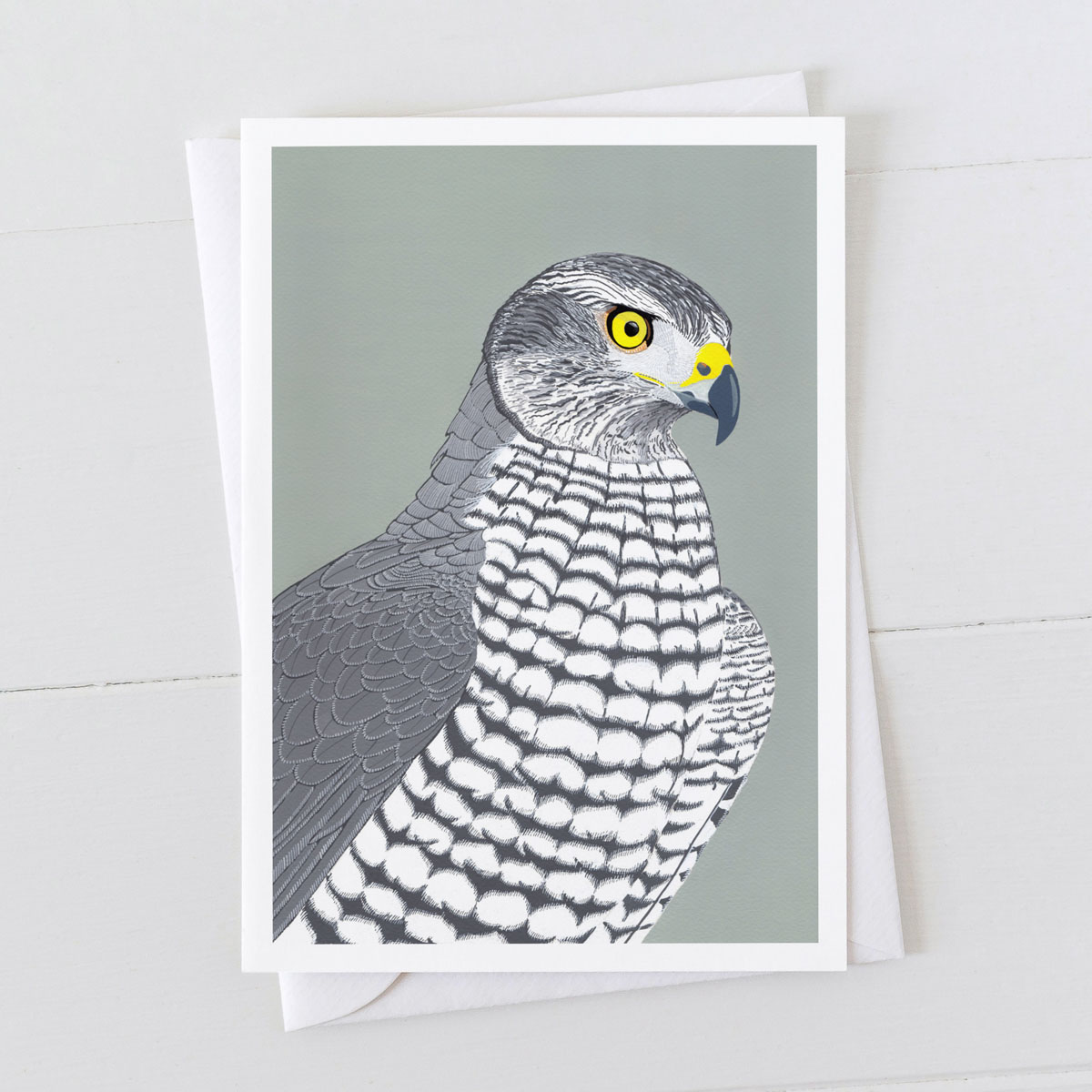Goshawk Bird Of Prey Greeting Card