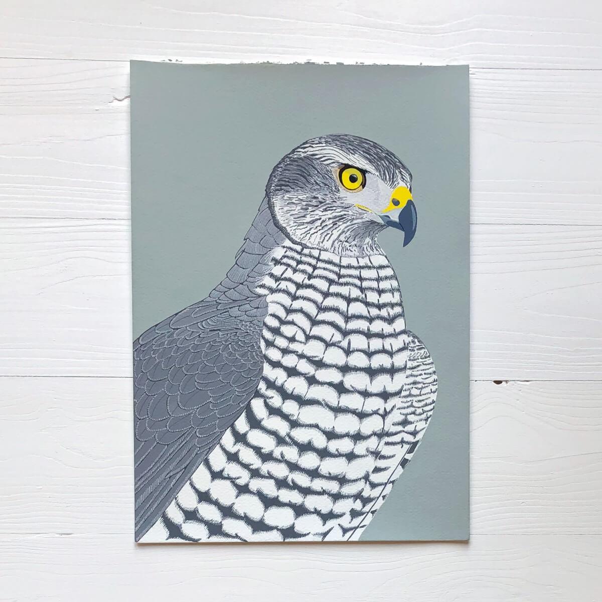 Goshawk Bird Of Prey Raptor Original Gouache Painting By Bird