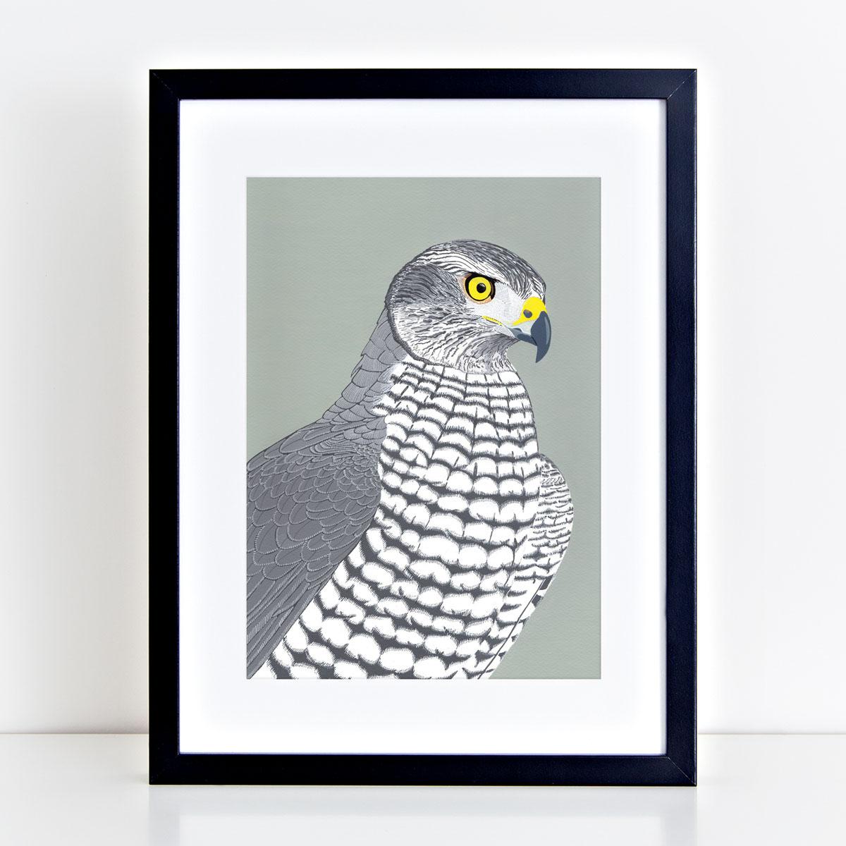 Goshawk Bird Head Mounted And Framed Print