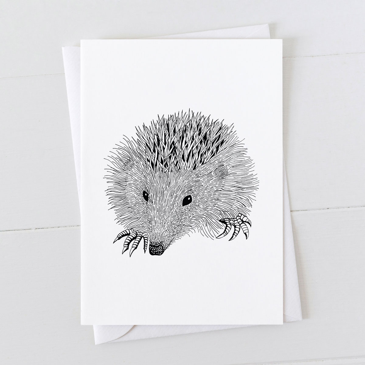 Hedgehog Pen And Ink Drawing Greeting Card