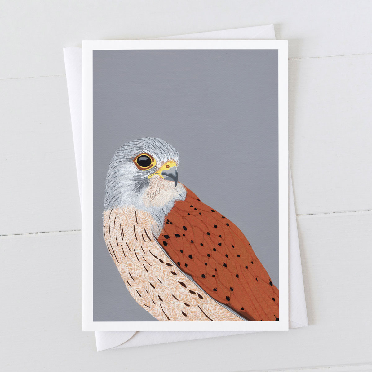 Kestrel Bird Of Prey Greeting Card