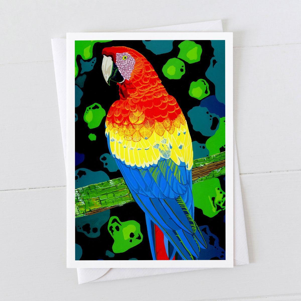 Macaw Bird Greeting Card