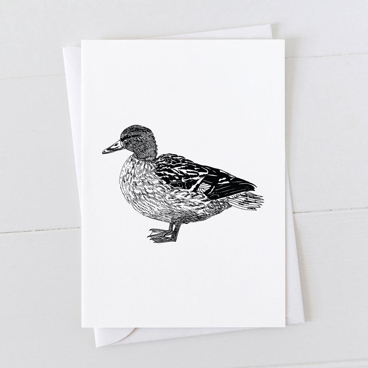 Mallard Duck Bird Pen And Ink Drawing Greeting Card
