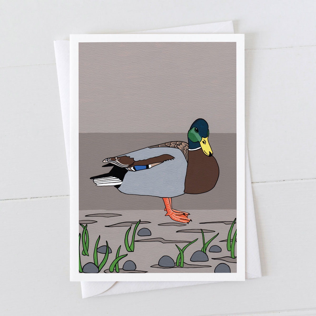 Mallard Drake Duck Water Bird Greeting Card