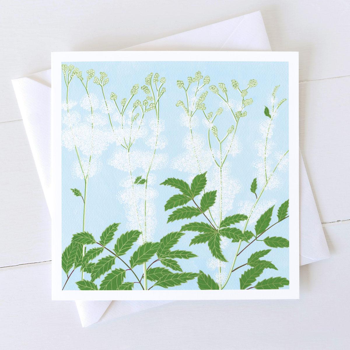 Meadow Sweet Wild Plant Greeting Card