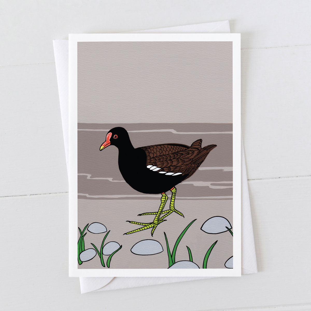 Moorhen Water Bird Greeting card
