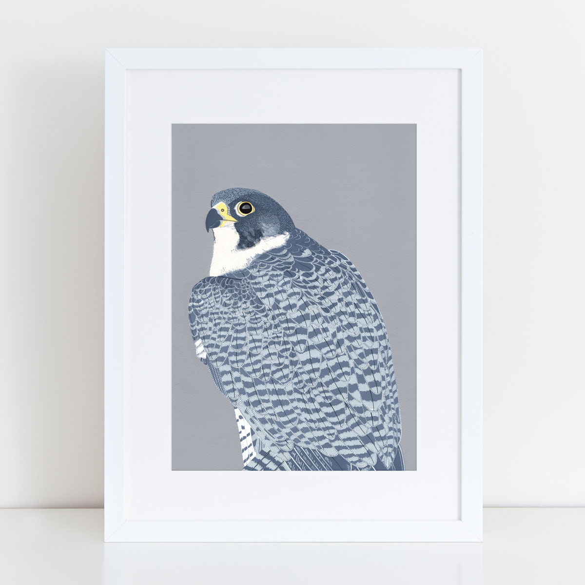 Peregrine Falcon Bird Head Mounted And Framed Print