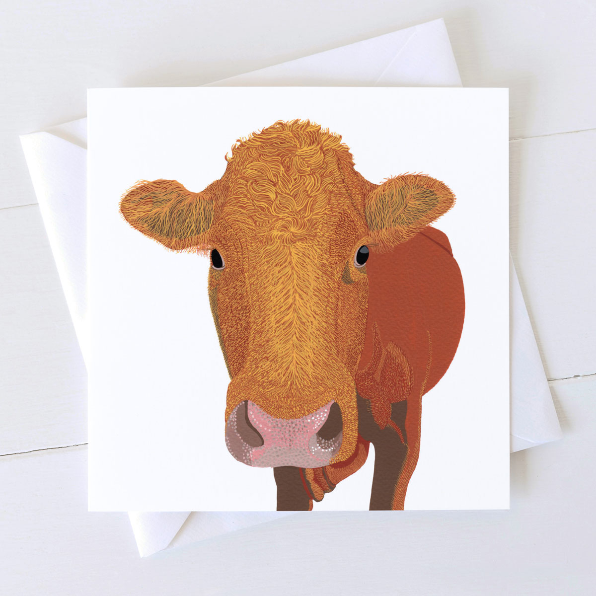 Aberdeen Angus Cow Greeting Card