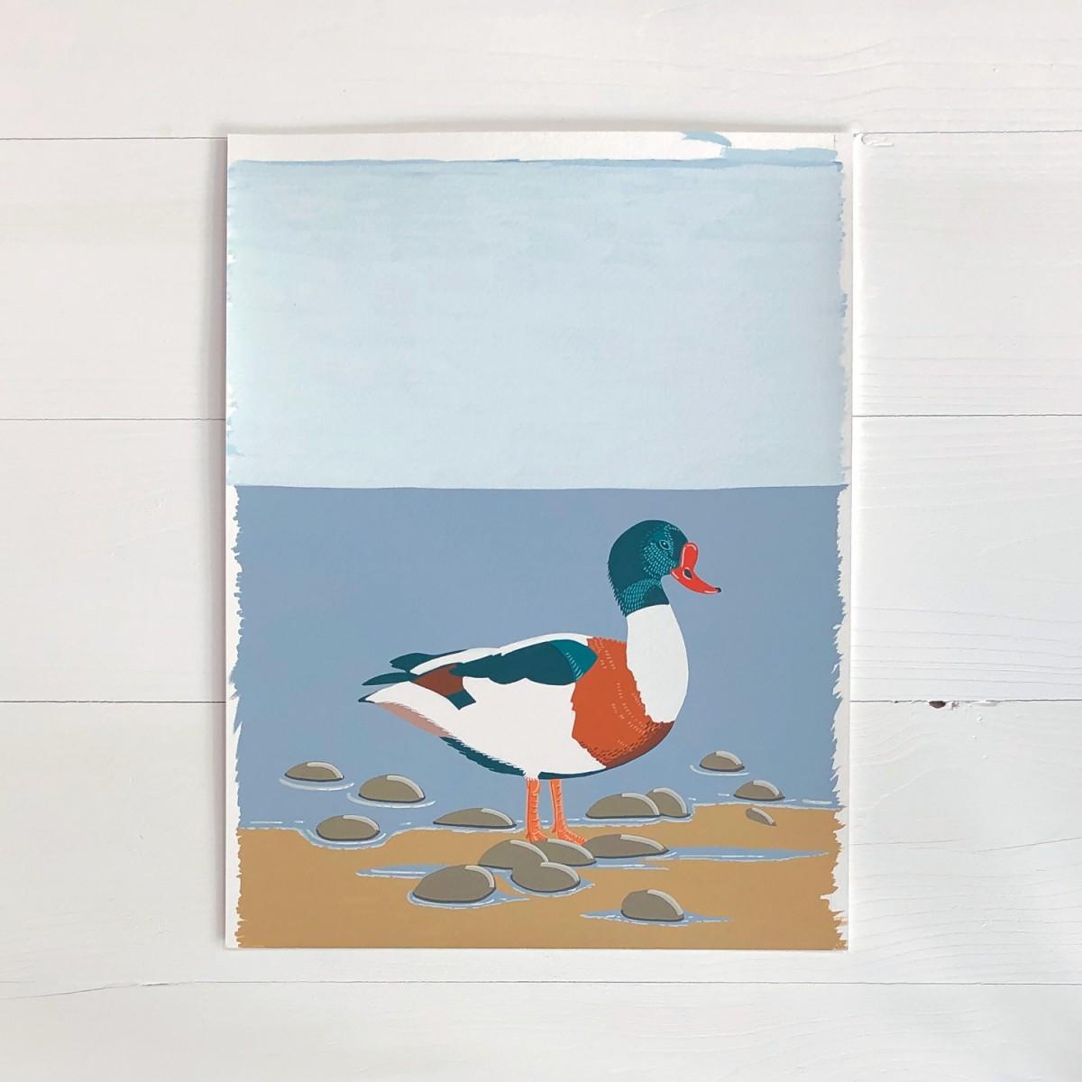 Shelduck Sea Bird Original Gouache Painting By Bird The Artist