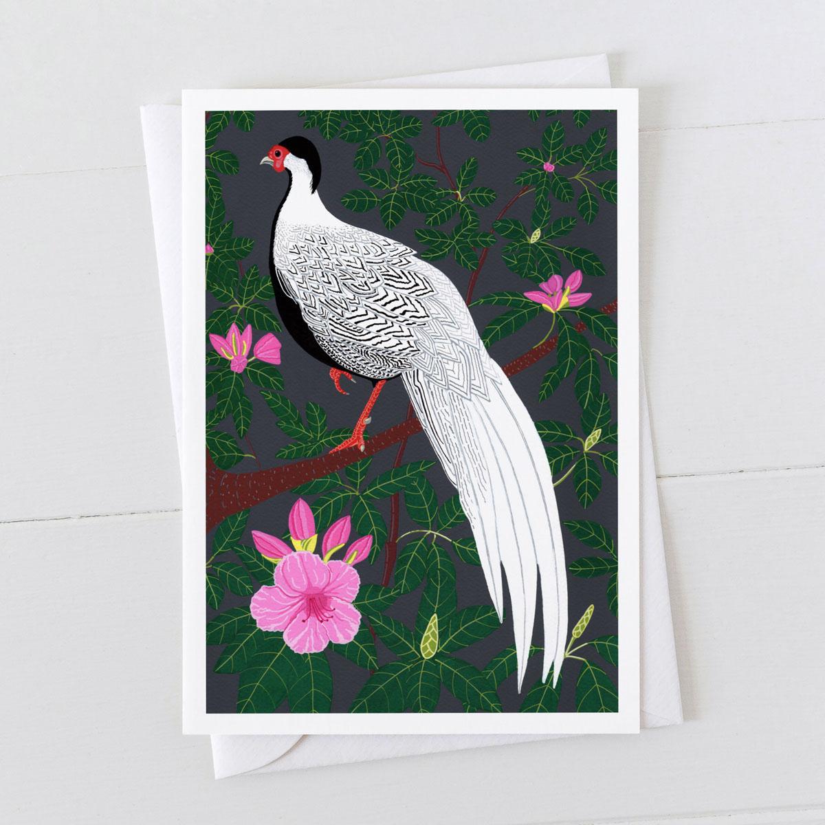 Silver Pheasant Greeting Card