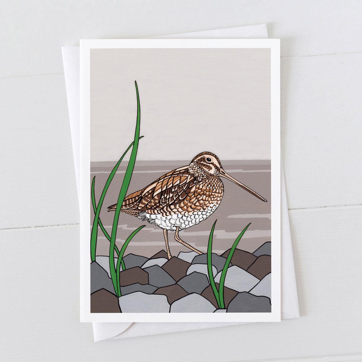 Snipe Water Bird Greeting Card