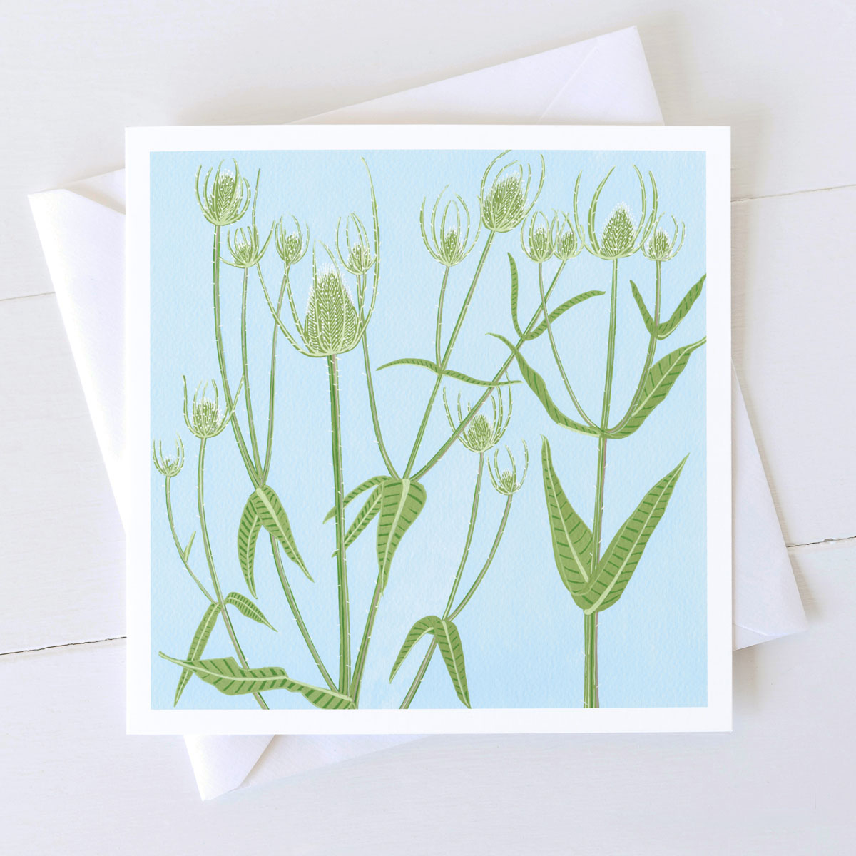Teasel Wild Plant Greeting Card
