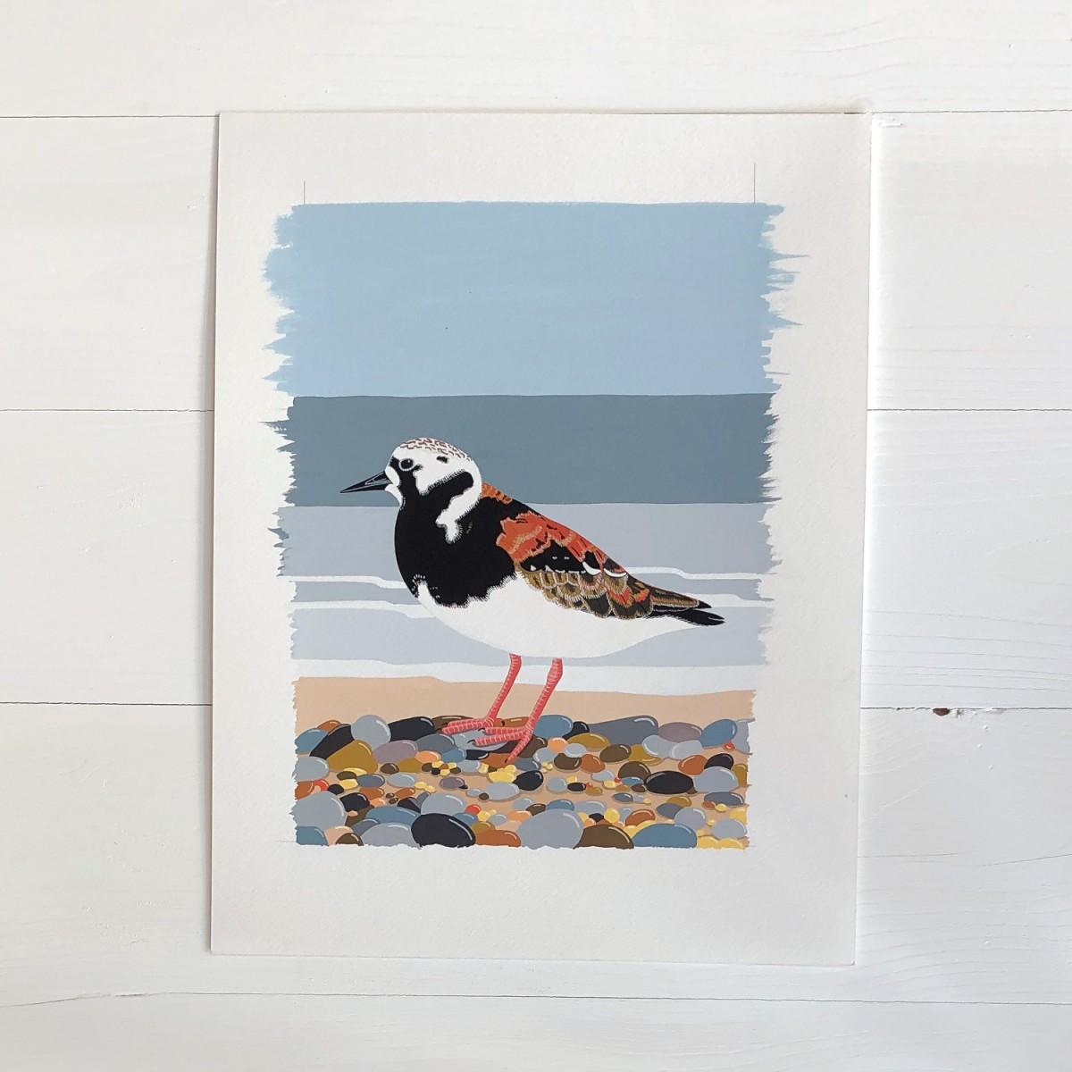 Turnstone Sea Bird Original Gouache Painting By Bird The Artist