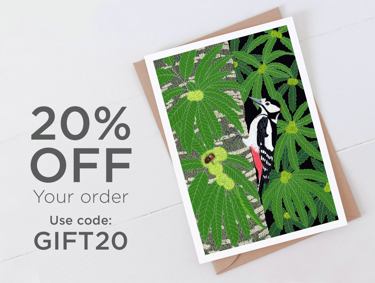 Spotted woodpecker special offer