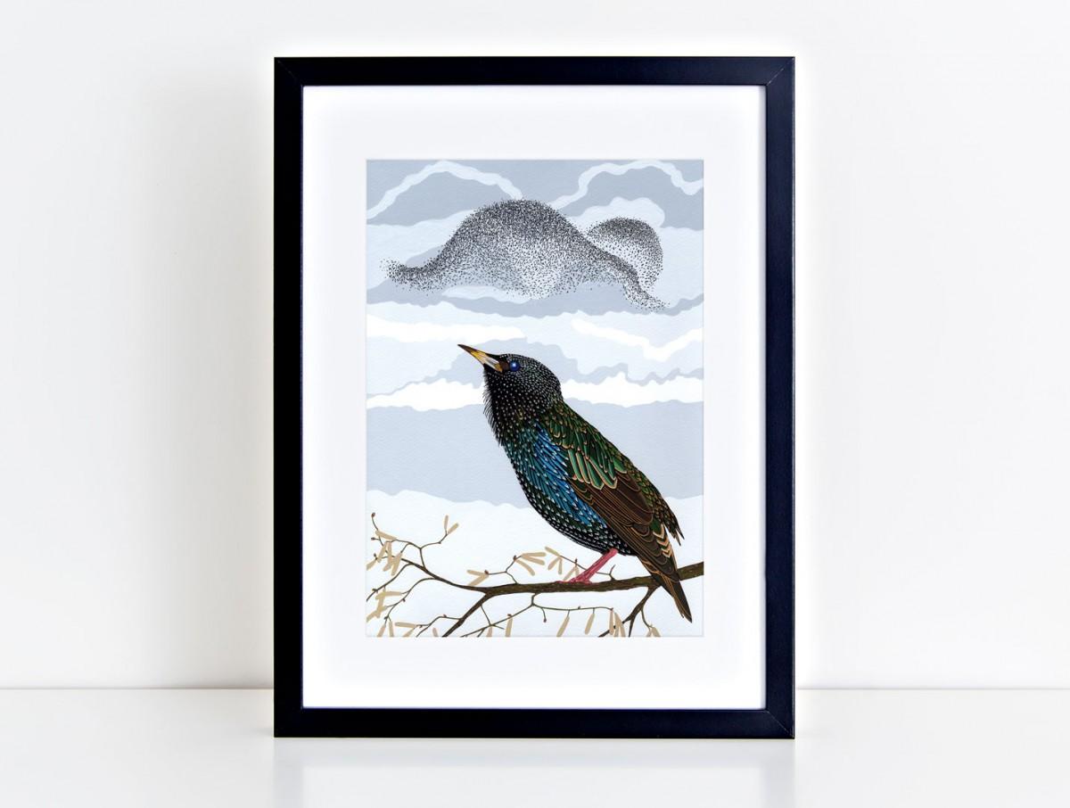 Starling mounted print black frame